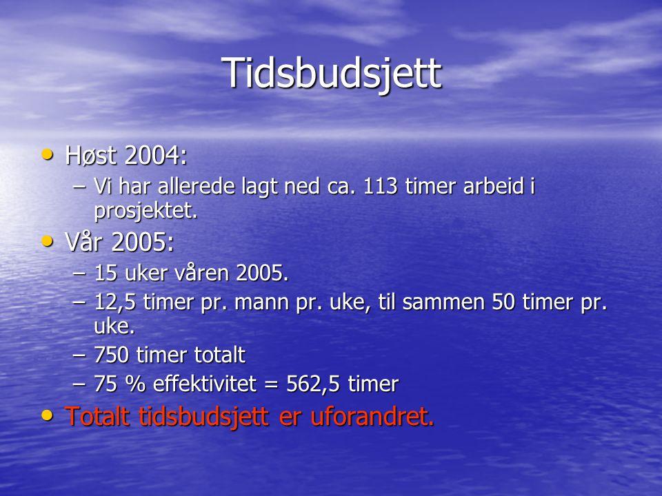 Tidsbudsjett Høst 2004: Høst 2004: –Vi har allerede lagt ned ca. 113 timer arbeid i prosjektet. Vår 2005: Vår 2005: –15 uker våren 2005. –12,5 timer p