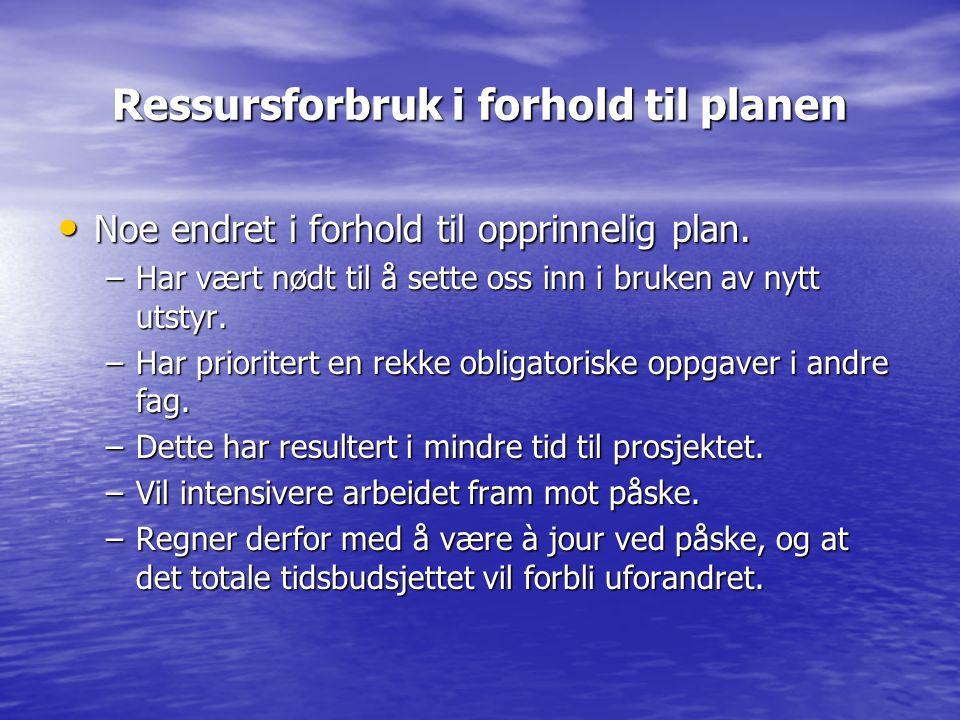 Framdrift i forhold til planen i prosjektbeskrivelsen Planleggingsfasen: Utvidet med to uker.