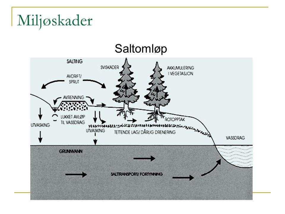 Miljøskader Saltomløp
