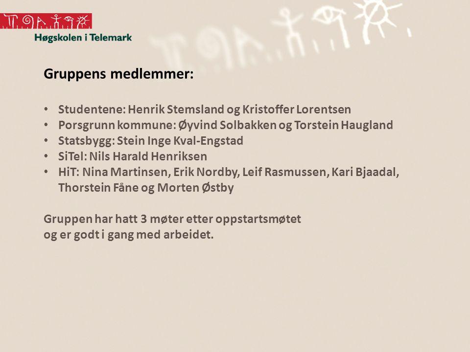 Gruppens medlemmer: Studentene: Henrik Stemsland og Kristoffer Lorentsen Porsgrunn kommune: Øyvind Solbakken og Torstein Haugland Statsbygg: Stein Ing