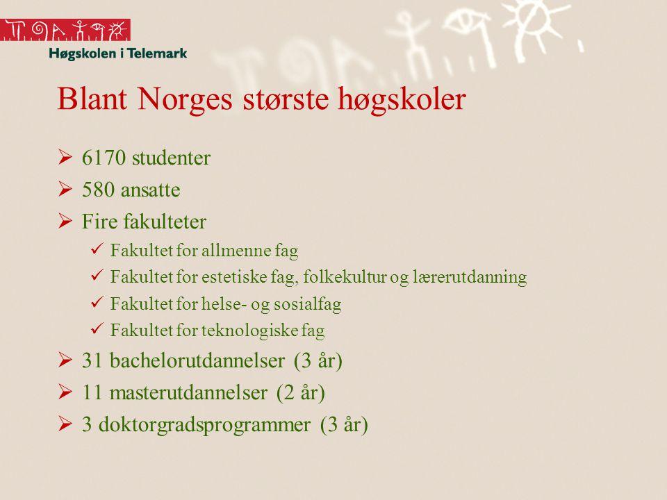 Blant Norges største høgskoler  6170 studenter  580 ansatte  Fire fakulteter Fakultet for allmenne fag Fakultet for estetiske fag, folkekultur og lærerutdanning Fakultet for helse- og sosialfag Fakultet for teknologiske fag  31 bachelorutdannelser (3 år)  11 masterutdannelser (2 år)  3 doktorgradsprogrammer (3 år)