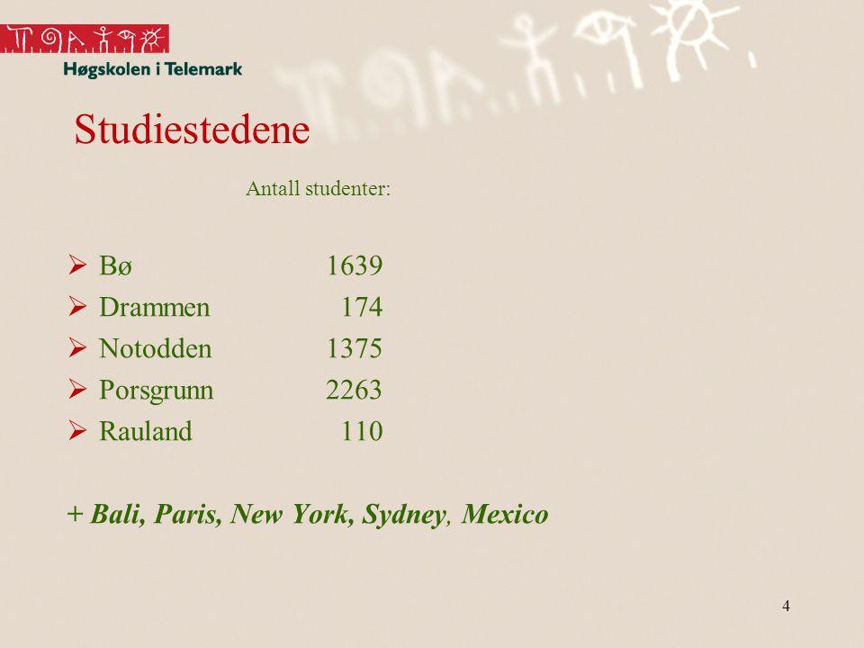Studiestedene Antall studenter:  Bø1639  Drammen 174  Notodden1375  Porsgrunn2263  Rauland 110 + Bali, Paris, New York, Sydney, Mexico 4
