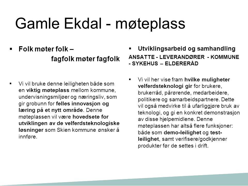 Gamle Ekdal - møteplass  Folk møter folk – fagfolk møter fagfolk  Vi vil bruke denne leiligheten både som en viktig møteplass mellom kommune, underv