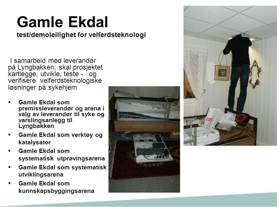 Gamle Ekdal test/demoleilighet for velferdsteknologi I samarbeid med leverandør på Lyngbakken, skal prosjektet kartlegge, utvikle, teste - og verifise