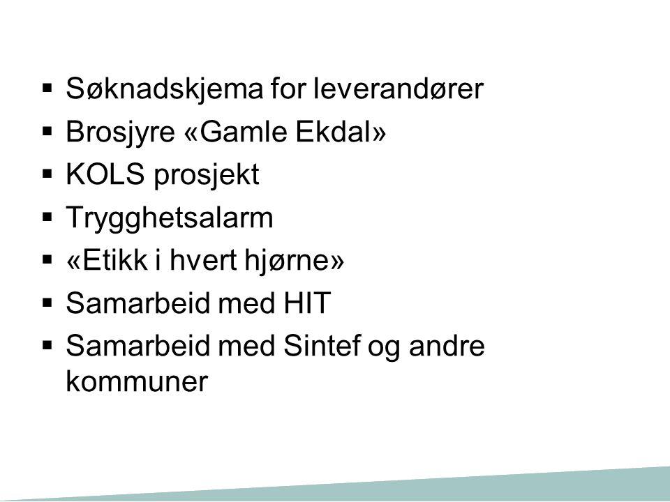  Søknadskjema for leverandører  Brosjyre «Gamle Ekdal»  KOLS prosjekt  Trygghetsalarm  «Etikk i hvert hjørne»  Samarbeid med HIT  Samarbeid med