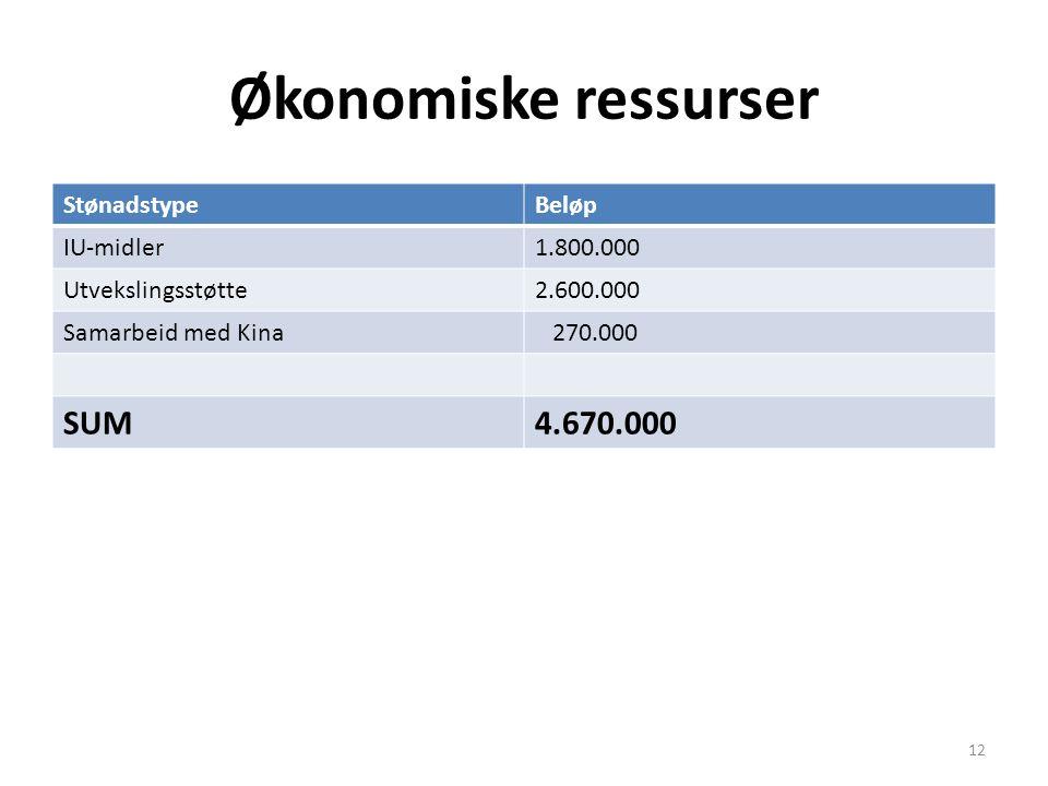 Økonomiske ressurser StønadstypeBeløp IU-midler1.800.000 Utvekslingsstøtte2.600.000 Samarbeid med Kina 270.000 SUM4.670.000 12