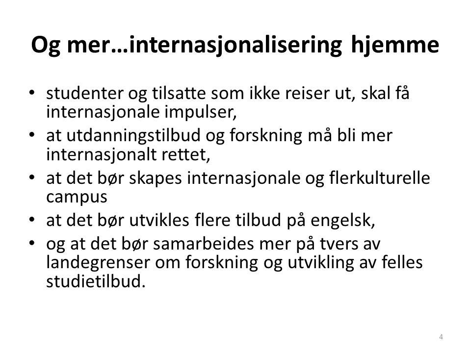 Vurdering Det er ønskelig at flere av de engelskspråklige tilbudene kan tilbys som en del av ordinære studier, og være åpent for både norske og utenlandske studenter.