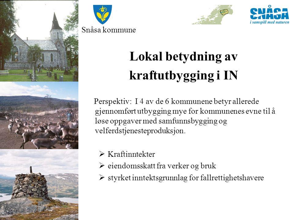 Snåsa kommune Lokal betydning av kraftutbygging i IN Perspektiv: I 4 av de 6 kommunene betyr allerede gjennomført utbygging mye for kommunenes evne ti