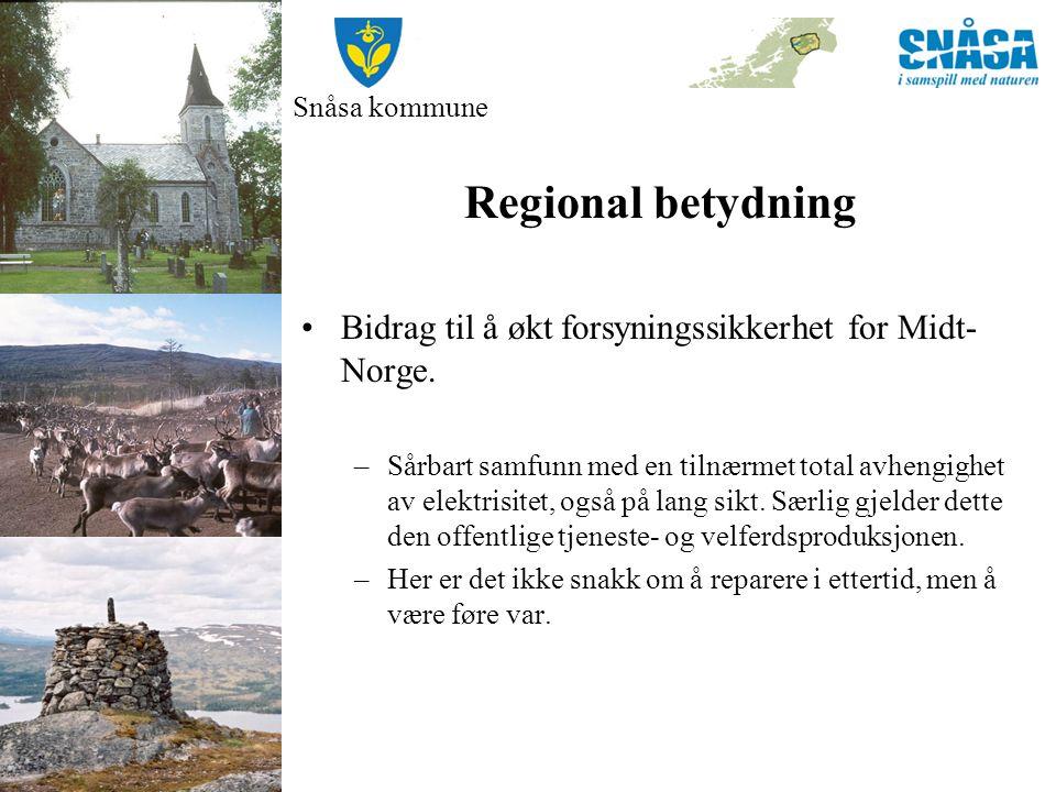 Snåsa kommune Regional betydning Bidrag til å økt forsyningssikkerhet for Midt- Norge. –Sårbart samfunn med en tilnærmet total avhengighet av elektris