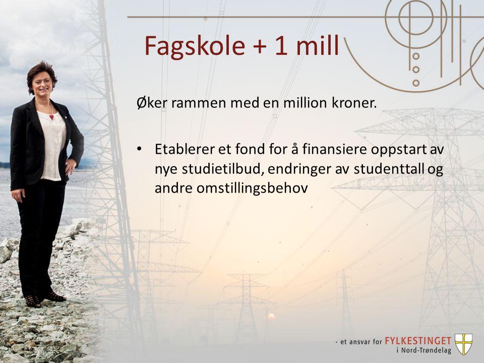 Fagskole + 1 mill Øker rammen med en million kroner.