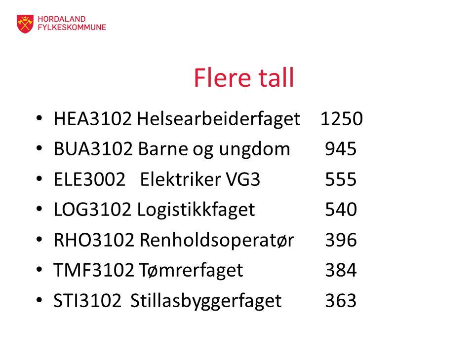 Flere tall HEA3102 Helsearbeiderfaget1250 BUA3102 Barne og ungdom 945 ELE3002 Elektriker VG3 555 LOG3102 Logistikkfaget 540 RHO3102 Renholdsoperatør 396 TMF3102 Tømrerfaget 384 STI3102Stillasbyggerfaget 363