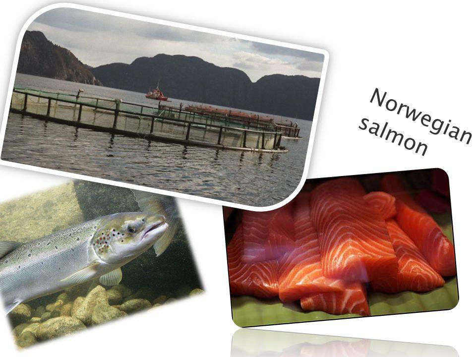 Norwegia n salmon