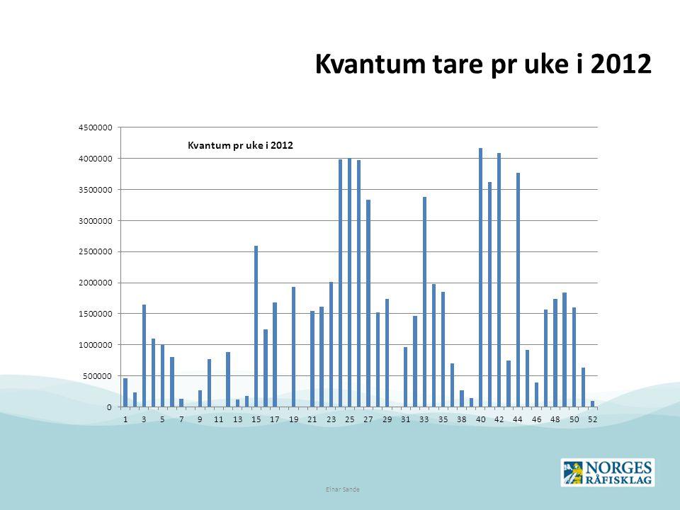 Kvantum tare pr uke i 2012 Einar Sande
