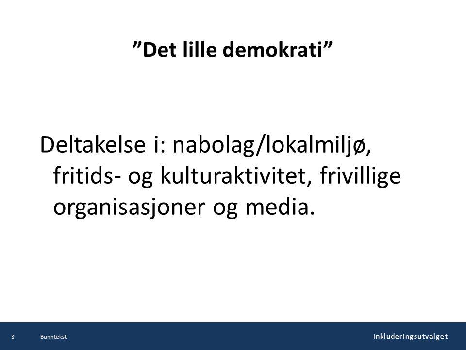 Inkluderingsutvalget Det lille demokrati Deltakelse i: nabolag/lokalmiljø, fritids- og kulturaktivitet, frivillige organisasjoner og media.