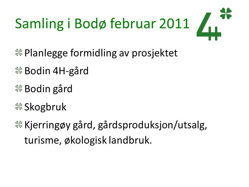Samling i Bodø februar 2011 Planlegge formidling av prosjektet Bodin 4H-gård Bodin gård Skogbruk Kjerringøy gård, gårdsproduksjon/utsalg, turisme, øko