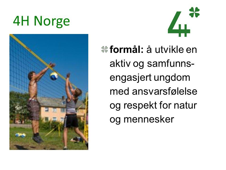4H Norge formål: å utvikle en aktiv og samfunns- engasjert ungdom med ansvarsfølelse og respekt for natur og mennesker