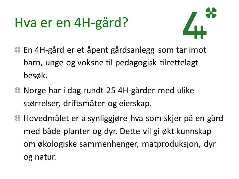 Hva er en 4H-gård? En 4H-gård er et åpent gårdsanlegg som tar imot barn, unge og voksne til pedagogisk tilrettelagt besøk. Norge har i dag rundt 25 4H