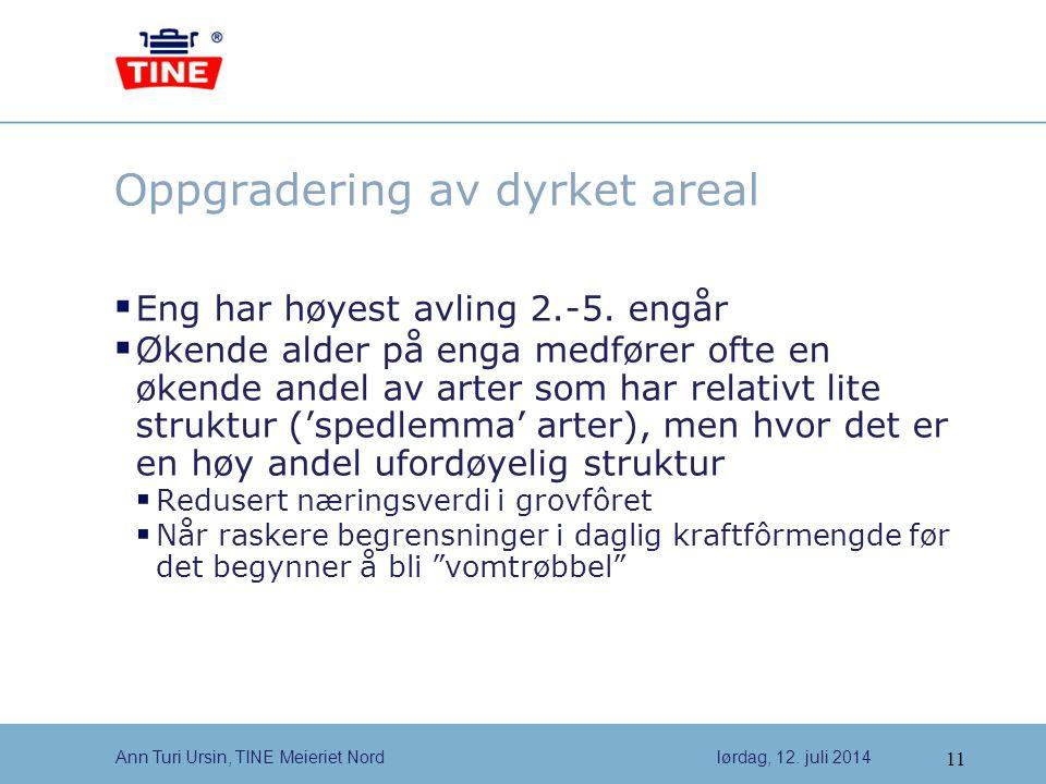 11 Ann Turi Ursin, TINE Meieriet Nordlørdag, 12.