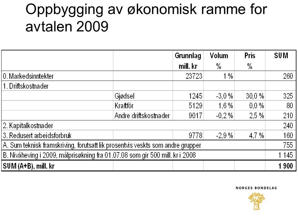 Oppbygging av økonomisk ramme for avtalen 2009