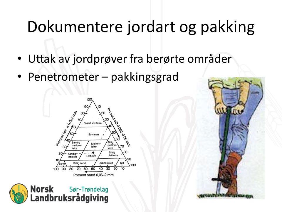 Uttak av jordprøver fra berørte områder Penetrometer – pakkingsgrad Dokumentere jordart og pakking