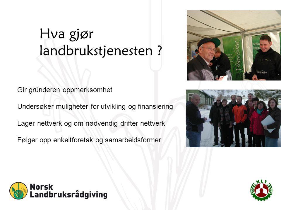 Hva gjør landbrukstjenesten ? Gir gründeren oppmerksomhet Undersøker muligheter for utvikling og finansiering Lager nettverk og om nødvendig drifter n