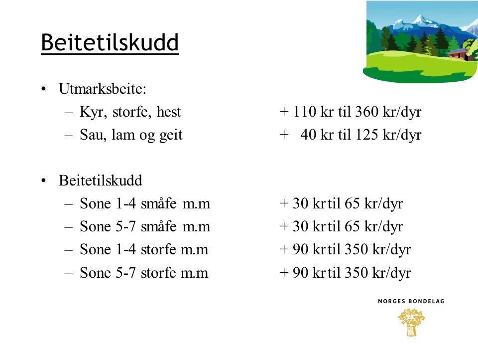 Beitetilskudd Utmarksbeite: –Kyr, storfe, hest+ 110 kr til 360 kr/dyr –Sau, lam og geit+ 40 kr til 125 kr/dyr Beitetilskudd –Sone 1-4 småfe m.m+ 30 kr