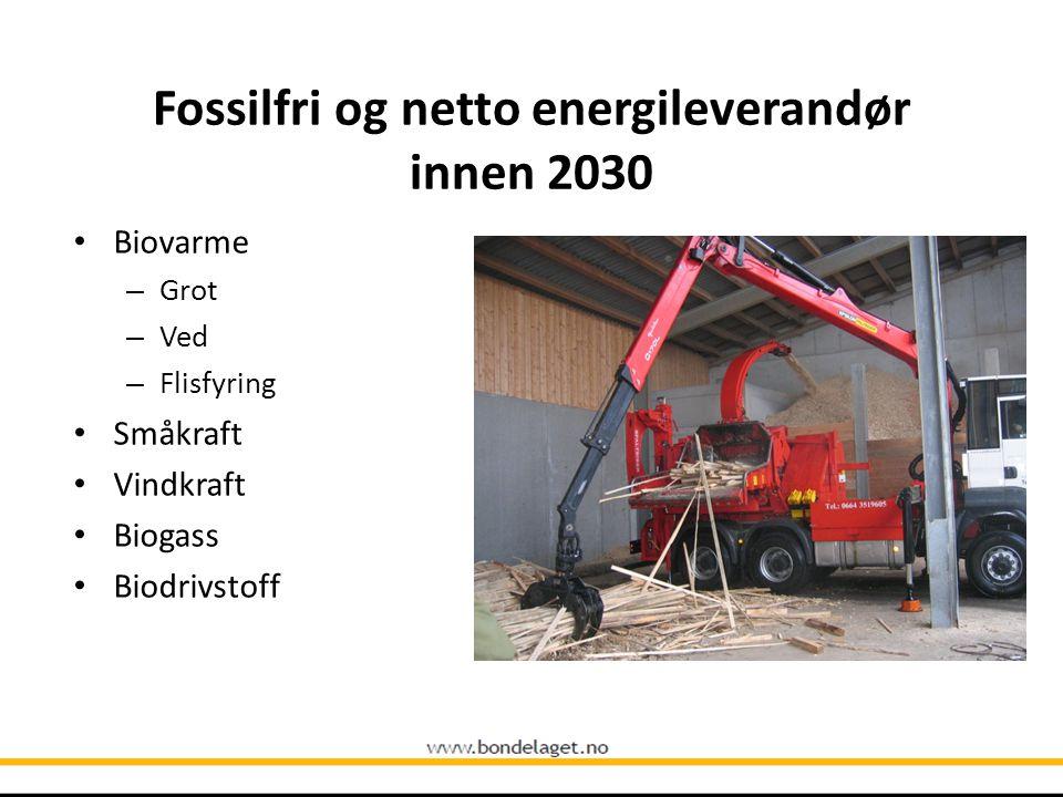Fossilfri og netto energileverandør innen 2030 Biovarme – Grot – Ved – Flisfyring Småkraft Vindkraft Biogass Biodrivstoff