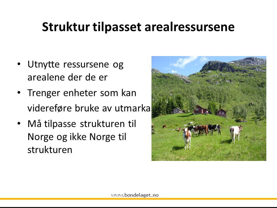 Utnytte ressursene og arealene der de er Trenger enheter som kan videreføre bruke av utmarka Må tilpasse strukturen til Norge og ikke Norge til strukt