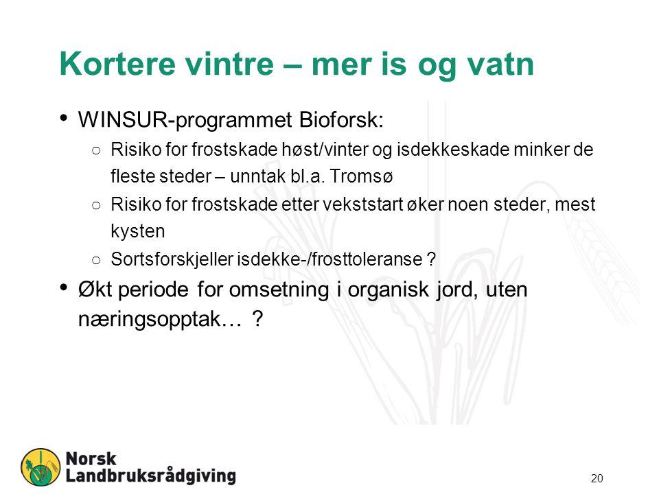 Kortere vintre – mer is og vatn WINSUR-programmet Bioforsk: ○Risiko for frostskade høst/vinter og isdekkeskade minker de fleste steder – unntak bl.a.