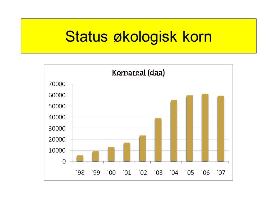 Status økologisk korn
