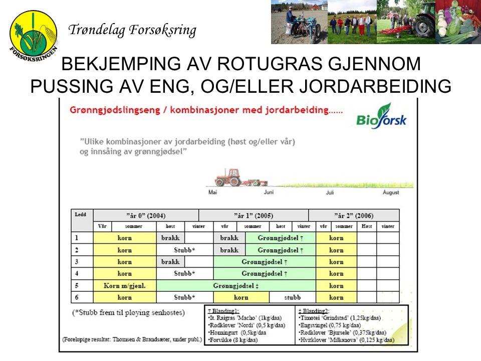 BEKJEMPING AV ROTUGRAS GJENNOM PUSSING AV ENG, OG/ELLER JORDARBEIDING