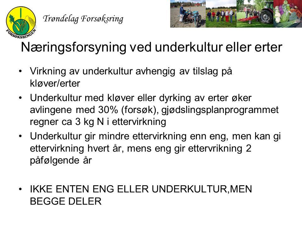 Trøndelag Forsøksring Næringsforsyning ved underkultur eller erter Virkning av underkultur avhengig av tilslag på kløver/erter Underkultur med kløver
