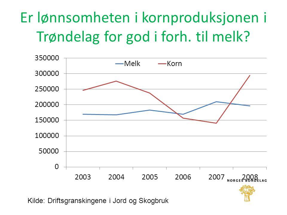 Er lønnsomheten i kornproduksjonen i Trøndelag for god i forh. til melk? Kilde: Driftsgranskingene i Jord og Skogbruk