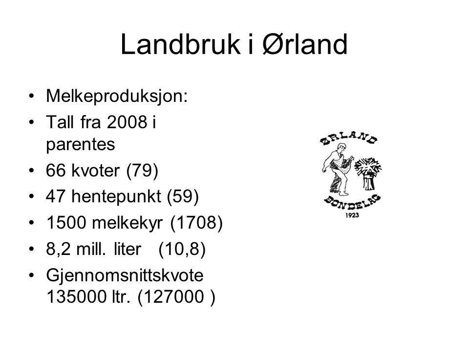 Landbruk i Ørland Melkeproduksjon: Tall fra 2008 i parentes 66 kvoter (79) 47 hentepunkt (59) 1500 melkekyr (1708) 8,2 mill.