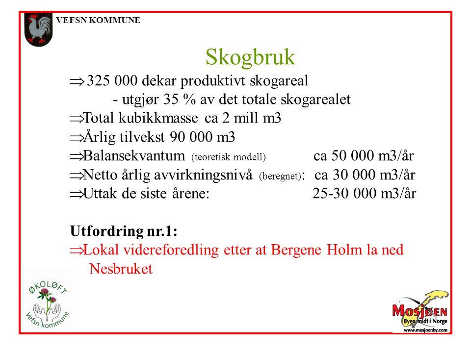 VEFSN KOMMUNE Skogbruk  325 000 dekar produktivt skogareal - utgjør 35 % av det totale skogarealet  Total kubikkmasse ca 2 mill m3  Årlig tilvekst