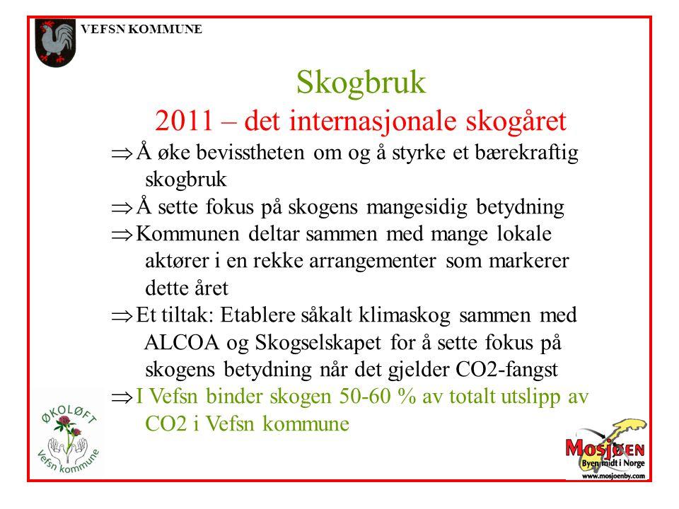 VEFSN KOMMUNE Skogbruk 2011 – det internasjonale skogåret  Å øke bevisstheten om og å styrke et bærekraftig skogbruk  Å sette fokus på skogens mange