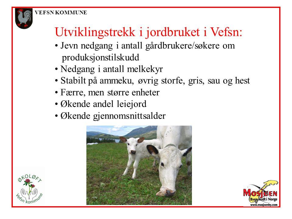VEFSN KOMMUNE Utviklingstrekk i jordbruket i Vefsn: Jevn nedgang i antall gårdbrukere/søkere om produksjonstilskudd Nedgang i antall melkekyr Stabilt