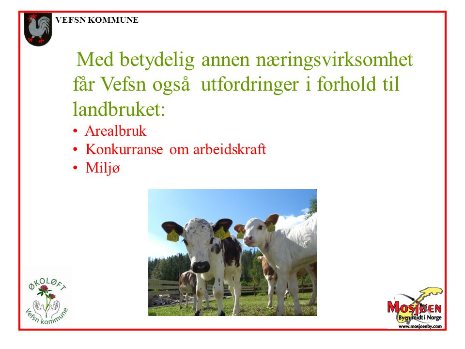 VEFSN KOMMUNE Med betydelig annen næringsvirksomhet får Vefsn også utfordringer i forhold til landbruket: Arealbruk Konkurranse om arbeidskraft Miljø