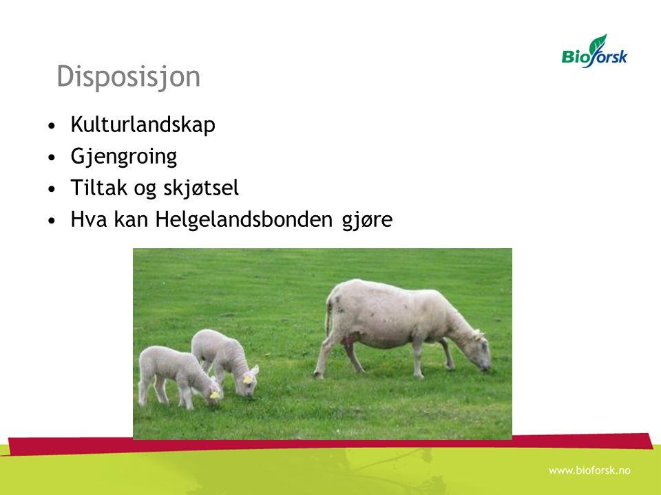 Disposisjon Kulturlandskap Gjengroing Tiltak og skjøtsel Hva kan Helgelandsbonden gjøre