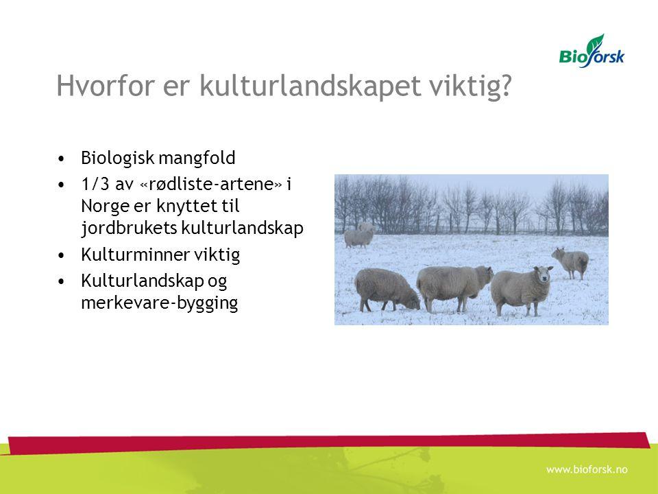 Endring i kulturlandskapet Reduksjon i beitedyr Medfører gjengroing –Mindre areal til matproduksjon –Tap av biologisk mangfold –Negativt for turistnæringen