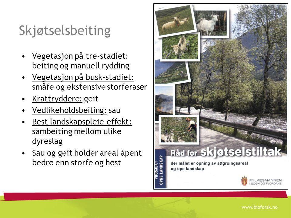 Skjøtselsbeiting Vegetasjon på tre-stadiet: beiting og manuell rydding Vegetasjon på busk-stadiet: småfe og ekstensive storferaser Krattryddere: geit