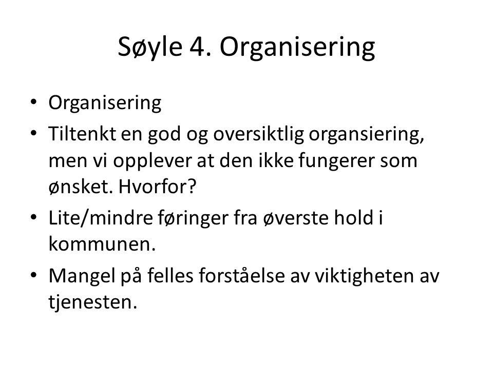 Søyle 4. Organisering Organisering Tiltenkt en god og oversiktlig organsiering, men vi opplever at den ikke fungerer som ønsket. Hvorfor? Lite/mindre