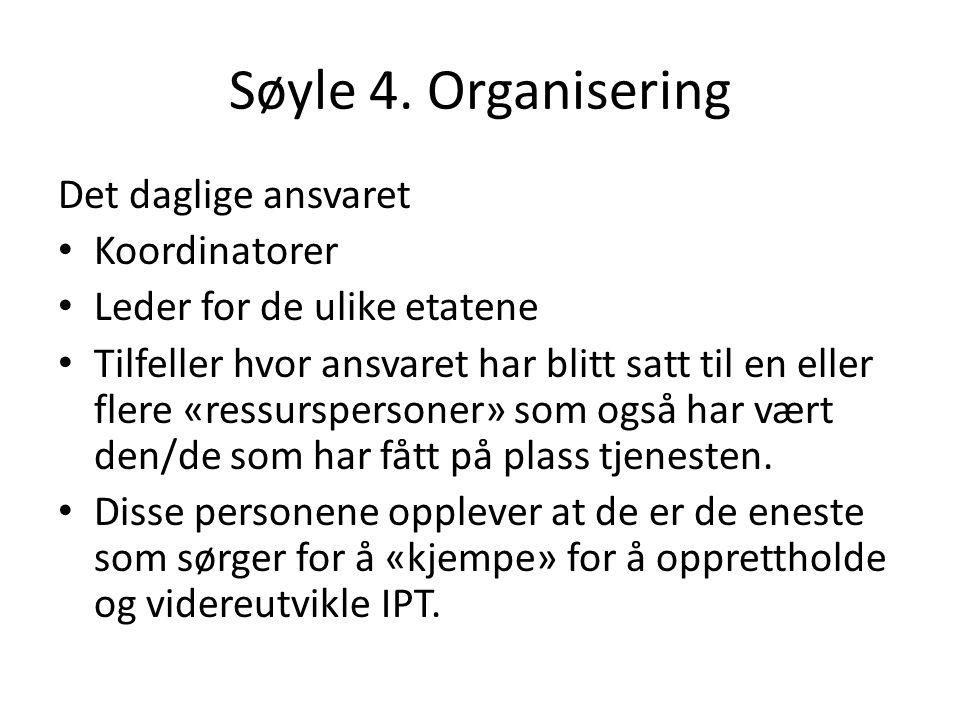 Søyle 4. Organisering Det daglige ansvaret Koordinatorer Leder for de ulike etatene Tilfeller hvor ansvaret har blitt satt til en eller flere «ressurs