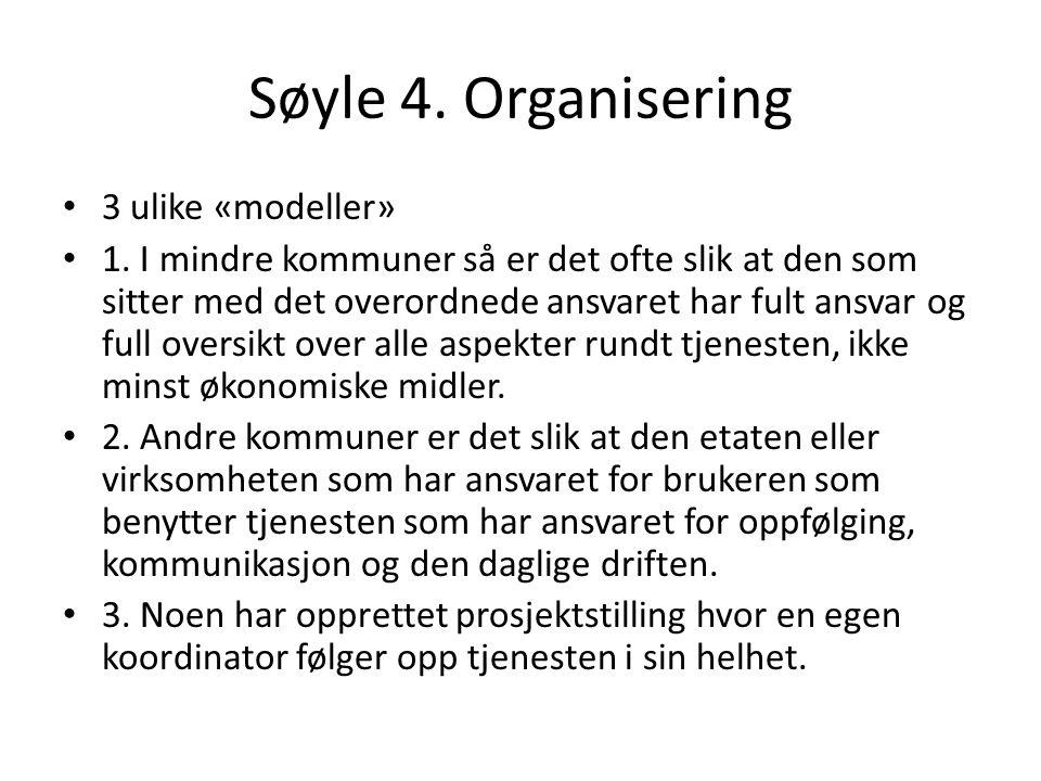 Søyle 4. Organisering 3 ulike «modeller» 1. I mindre kommuner så er det ofte slik at den som sitter med det overordnede ansvaret har fult ansvar og fu