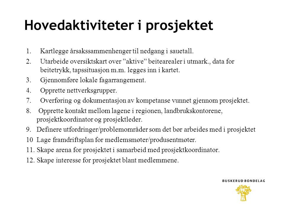 Hovedaktiviteter i prosjektet 1.Kartlegge årsakssammenhenger til nedgang i sauetall.
