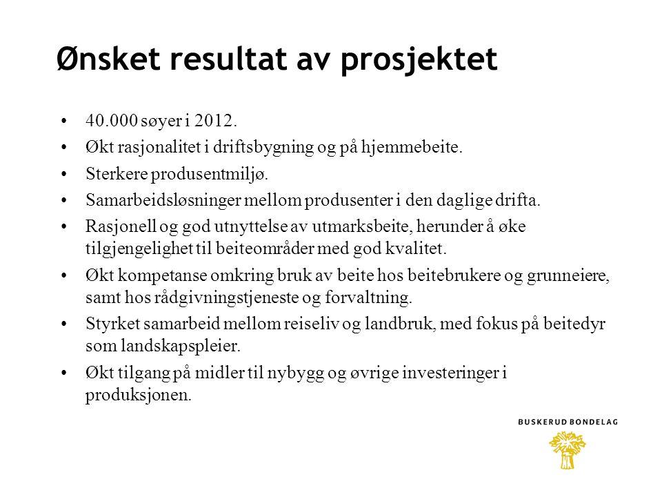 Ønsket resultat av prosjektet 40.000 søyer i 2012.
