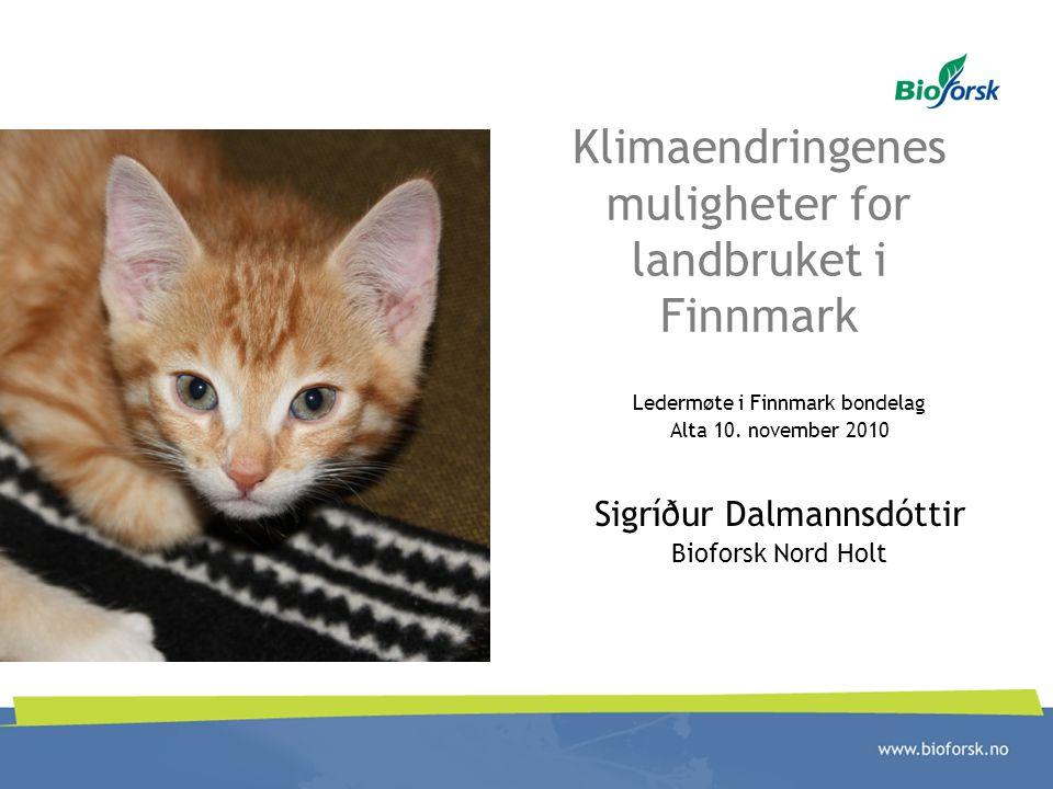 Klimaendringenes muligheter for landbruket i Finnmark Ledermøte i Finnmark bondelag Alta 10. november 2010 Sigríður Dalmannsdóttir Bioforsk Nord Holt