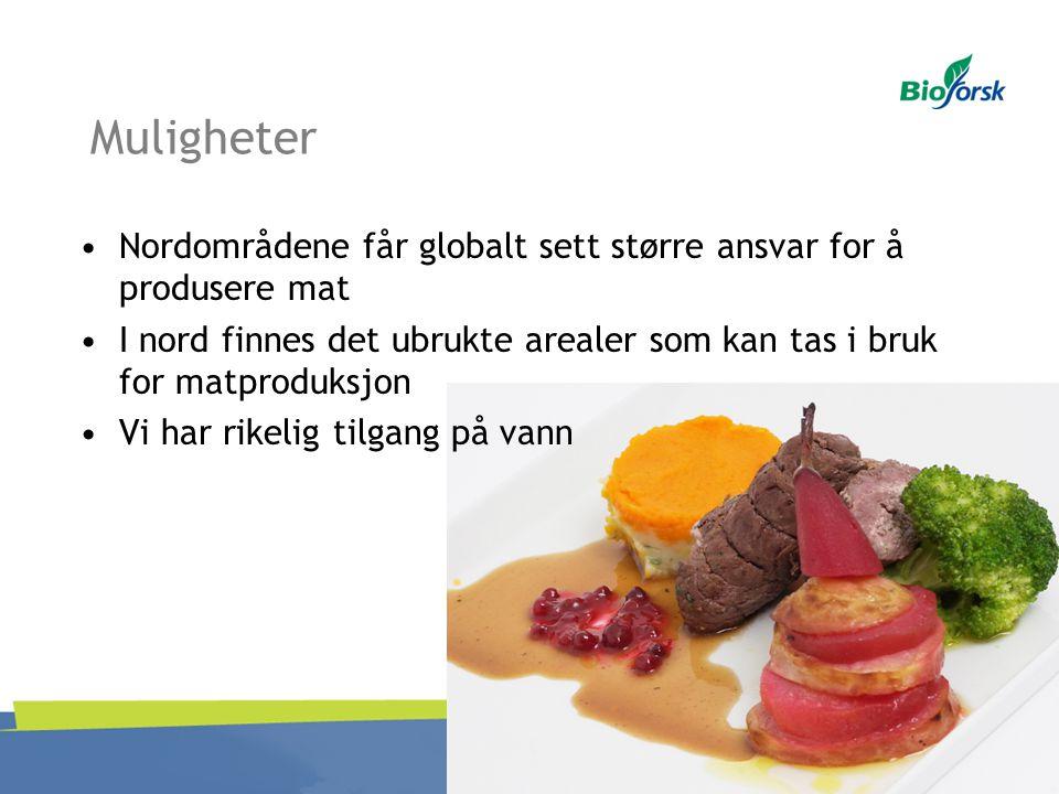 Muligheter Nordområdene får globalt sett større ansvar for å produsere mat I nord finnes det ubrukte arealer som kan tas i bruk for matproduksjon Vi h