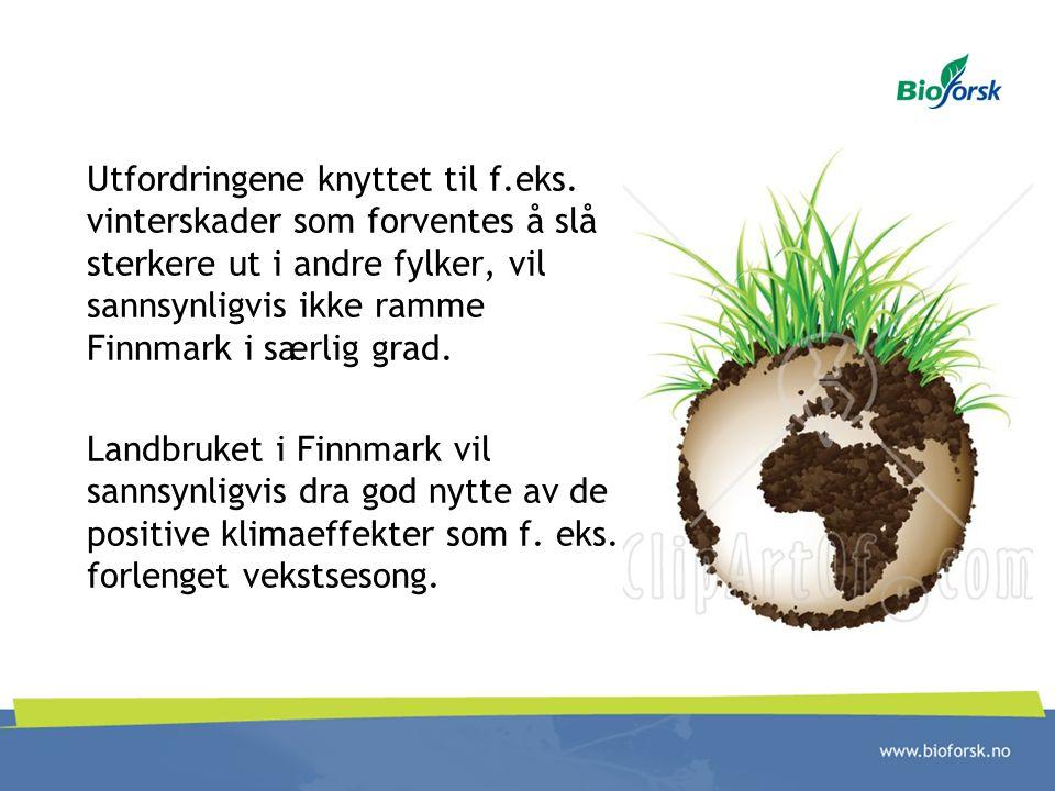 Utfordringene knyttet til f.eks. vinterskader som forventes å slå sterkere ut i andre fylker, vil sannsynligvis ikke ramme Finnmark i særlig grad. Lan