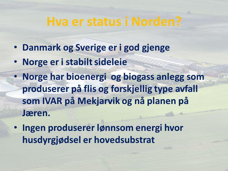 Hva er status i Norden? Danmark og Sverige er i god gjenge Norge er i stabilt sideleie Norge har bioenergi og biogass anlegg som produserer på flis og